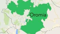 Oromiyaatti nama miliyoona 2 olitti gargaarsa eegataa horii kuma hedduutti bonaan dhumate