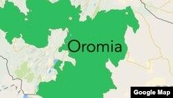 Jaarmayoonni Oromoo Lama Biyyatti Deebi'uuf Ka Jiran Ta'u Beeksiisan. Warri Biyya Seene Moo Maal Jedhu?