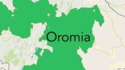 Kanneen Lixa Oromiyaa Keessatti Hidhaman Seeratti Dhihaachaa Hin Jiran Jedhama