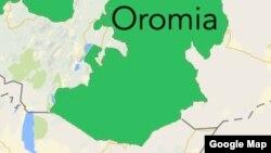 Uummata Naannoo Uummattoota Kibbaa fi Kan Oromiyaa Godina Gujii Gidduutti Lolli Ka'e Lubbuu Galaafate