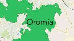 Haalli Lixa Oromiyaa Tasgabaahaa Jiraachuun Ibsame