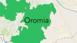 Oromiyaa Bakkawwan Adda Addaatti Namoonni Ajjeefamuu Tu Dubbatama
