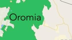 Mormii Baratoota Yunivarsiitilee Naannoo Oromiyaa