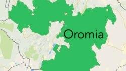 Shaampiyoonaa Ispoortii Aadaa Oromoo Baranaa,Jimma