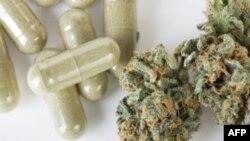 14 bang Hoa Kỳ đã cho phép sử dụng cần sa trong y khoa
