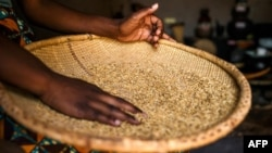 Un panier de riz dans la banlieue de Marlborough à Harare, le 18 octobre 2018.