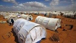 پناهندگان سوماليايی جمعيت اردوگاه داداب را به ۴۴۰ هزار نفر رسانده اند