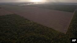 En la imagen, un área deforestada en el estado de Pará.
