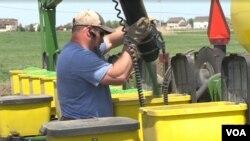 Soybean farmer Scott Halpin tends to his crop in Morris, Illinois.