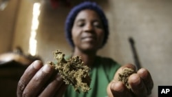 FILE - Zimbabwean healer Martha Katsande shows a traditional medicine used in her surgery practice, Harare.