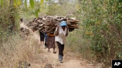 FILE -Women walk out of the forest carrying wood to use for cooking, in Tsavo East, in Kenya, June 20, 2014. A new report says environmental crime such as poaching elephants for ivory and selling illegal charcoal is helping finance criminal, militia and terrorists.