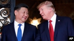 FILE - Chinese President Xi Jinping, left, smiles at U.S. President Donald Trump as they pose together for photographers before dinner at Mar-a-Lago in Palm Beach, Florida, April 6, 2017.