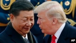 FILE - U.S. President Donald Trump, right, chats with Chinese President Xi Jinping in Beijing, China.