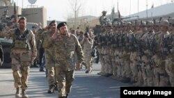 د افغان پولیسو ځانګړي ځواکونه په ۲۰۱۲ کال کې د کورنیو چارو د وزارت په تشکیلاتو کې شامل شوي دي.