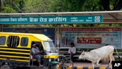A stray cow walks past a bus stop in Allahabad, India, May 29, 2017