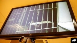 Greenpeace International activist and the Arctic Sunrise ship radio operator Colin Russell of Australia is shown behind bars on a TV screen during a court hearing in St. Petersburg, Russia, Nov. 28, 2013.