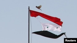 FILE - A bird flies near a torn Syrian national flag in the city of Qamishli, Syria, April 21, 2016.