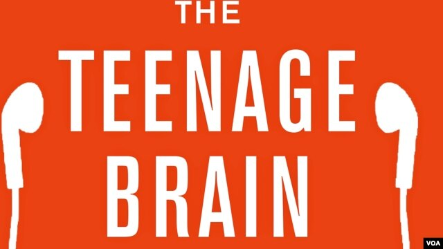 """In her new book """"The Teenage Brain: A Neuroscientist's Survival Guide to Raising Adolescents and Young Adults,"""" Frances Jensen explains the strengths and weaknesses of the brain at this stage of development."""