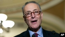 FILE - Sen. Charles Schumer, D-N.Y., speaks to the media on Capitol Hill in Washington.