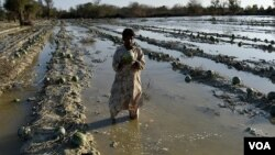 سیل در ایران و وضعیت کشاورزان