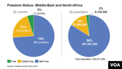 Media Freedom in the Middle East and North Africa