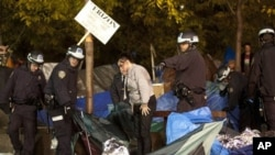 纽约警察11月15日凌晨1点开始驱逐祖可蒂公园的抗议者并拆除帐篷
