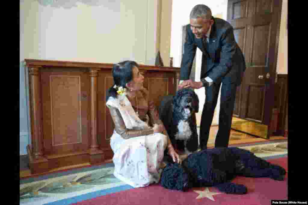 Aung San Suu Kyi, State Counsellor and Minister of Foreign Affairs of Myanmar, visits U.S. President Barack Obama's family pets Bo and Sunny in the Cabinet Room of the White House following their bilateral meeting, Sept. 14, 2016.