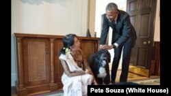 President Barack Obama and Aung San Suu Kyi, State Counsellor and Minister of Foreign Affairs of Myanmar, visit with Obama family pets Bo and Sunny in the Cabinet Room of the White House following their bilateral meeting, Sept. 14, 2016.