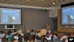 Συνεργασία ελλήνων και αμερικανών επιστημόνων για την διάσωση της μεσογειακής φώκιας
