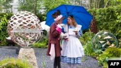 "FILE - Exhibitors dressed as ""The Hatter"" (L) and ""Alice in Wonderland"" (R) drink tea whilst sheltering from the rain under an umbrella on the David Harbor stand at the 2015 Chelsea Flower Show in London, May 18, 2015."