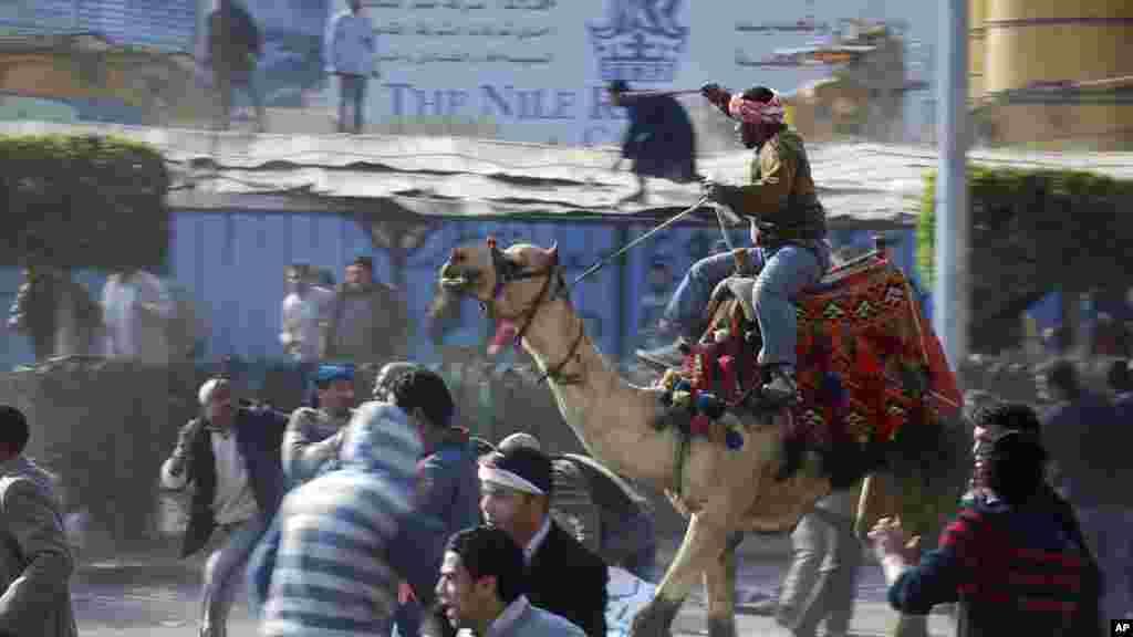 د مصر په قاهره ښار کې د حسنې مبارک د رژیم په اوښ سپور پلوی چې د مبارک ضد لاریون کونکو د ویرولو هڅه کوي. د ۲۰۱۱ کال د فبروری ۲