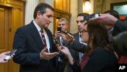 미국 공화당 소속 테드 크루즈 상원의원이 지난해 2월대북제재 강화 법안 표결에 앞서 기자들의 질문에 답하고 있다.