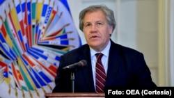 """El secretario general de la OEA, Luis Almagro, dice que en Venezuela """"se rompió el orden constitucional""""."""