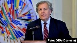 """Luis Almagro termina su tuit prometiendo que """"En breve concluiré actualización de informe sobre situación en #Venezuela""""."""