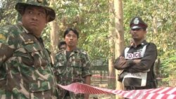 Thai Wildlife Group Raided for Criticizing Elephant Poaching