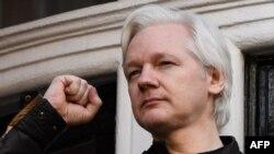 El fundador de Wikileaks Julian Assange levanta su puño antes de dirigirse a los medios en el balcón de la Embajada de Ecuador en Londres, el 19 de mayo de 2017.