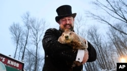 Groundhog Club handler A.J. Dereume holds Punxsutawney Phil, the weather prognosticating groundhog, during the 135th celebration of Groundhog Day on Gobbler's Knob in Punxsutawney, Pa., Tuesday, Feb. 2, 2021. (AP Photo/Barry Reeger)