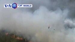 Syria: Amateur video appears to show shells hitting al-Hameh village