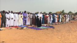 Selifitini, Mali la