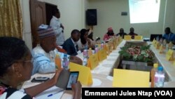 Assemblée générale du fonds social pour l'emploi à Yaoundé, le 3 décembre 2017. (VOA/Emmanuel Jules Ntap)