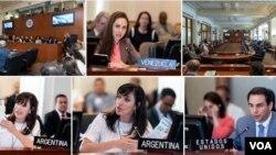 La comisión fue propuesta por Estados Unidos, Argentina, Chile, Colombia, Perú, México, Canadá y Brasil.