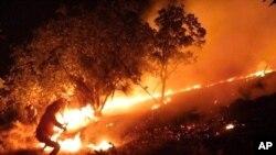 پـیاوێـک ههوڵی کوژاندنهوهی ئاگری یهک له دارسـتانهکانی کوردسـتانی ئێران دهدات