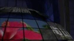 Weşana Radyo-TV 12 meha 1, 2013