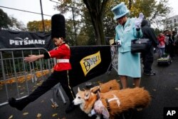 Halloween Dog Parade in New York City.
