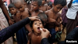 A Rohingya refugee child gets an oral cholera vaccine