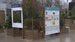 Dan planete na Kosovu: Urbana bašta u centru Prištine
