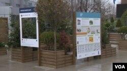 """Instalacija """"Urbana bašta"""" u centru Prištine povodom Dana planete 2021. (Foto: VOA)"""