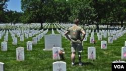 Vojnici su proteklih dana poboli više od 260 hiljada zastavica kraj nadgrobnih spomenika na Nacionalnom groblju u Arlingtonu