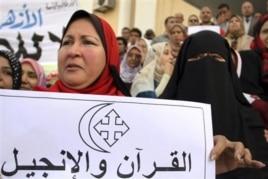 Egypt's Muslim Brotherhood: Its Agenda