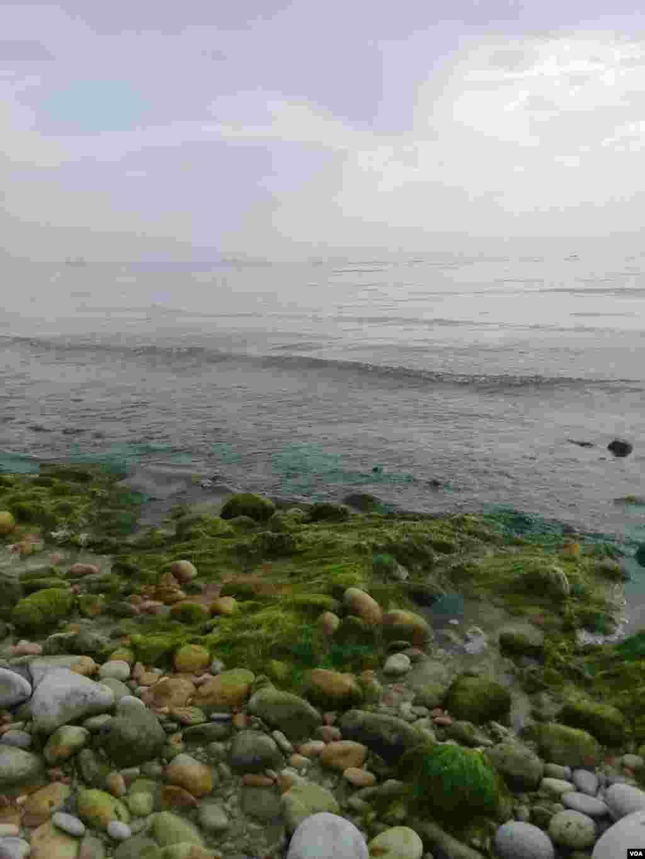 ساحل بندر عسلویه عکس: آریا (ارسالی شما)